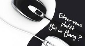 Etes-vous Yin ou Yang ?