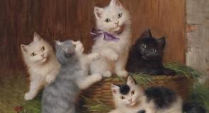 Rever de chatons