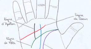 Voyance ligne de la main
