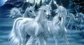 Voyance unicorne